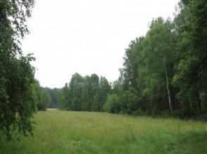 Sprzedam ziemię (las, łąka, pole orne) + budynki - zdjęcie 1