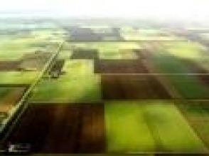 Najkorzystniejsze ubezpieczenia i kredyty rolnicze - zdjęcie 1