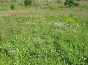 Działka rolna, 1 127 m2 Cena : 125 000 PLN w Osielsku obok Bydgoszczy tel.661745738 sprzedam - zdjęcie 1