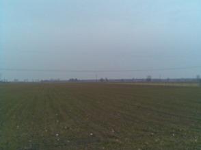 Ziemia rolna (moze byc jako dzialki budowlane) po przystepnej cenie. - zdjęcie 1