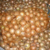 Cebulę sprzedam - ilości tirowe - zdjęcie 1
