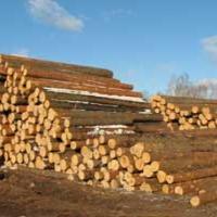 Kupie drewno tartaczne