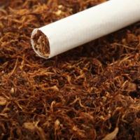 tytoń gotowy do palenia - zdjęcie 1