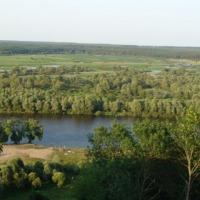 Ukraina.Staw rybny 35ha + torfowiska 30ha.Tanio - zdjęcie 1