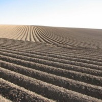SPRZEDAM / WYDZIERZAWIE 2000 hektarow gospodarstwo - zdjęcie 1
