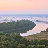 Ziemia na Ukrainie.Gospodarstwa pszczelarskie,pasieczne.Tanio - zdjęcie 1