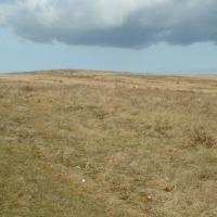 Sprzedam grunt pod wiatraki lub solary - zdjęcie 1
