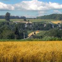 Ukraina.Gospodarstwa i grunty rolne.Na sprzedaz,wynajem.Tanio - zdjęcie 1