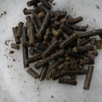 Linia do produkcji nawozu -granulat z kurzeńca i innej biomasy - zdjęcie 1