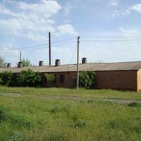 Ukraina.Grunty rolne na cele energetyczne/paszowe.Tanio - zdjęcie 1