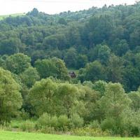 Sprzedam las w Bieszczadach 1,53 ha + koliba - zdjęcie 1