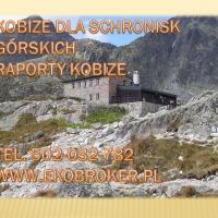 Raporty do KOBIZE i opłaty środowiskowe dla schronisk górskich - zdjęcie 1