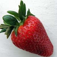 Holenderskie sadzonki truskawek - zdjęcie 1