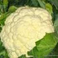 Kalafior, kapusta, brokuły - duże ilości, nawiążę współpracę - zdjęcie 1