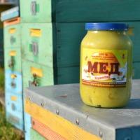Sprzedamy miód z własnej pasieki w Ukrainie - zdjęcie 1