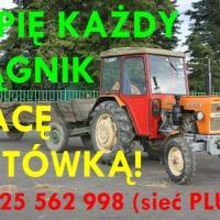 Kupię Władymirca T-25 kupie MF235 MF255 kupie MTZ82 MTZ80 Pronar Belarus Białoruś LTZ  Tel.725 562 998 (sieć Plus) kupie Zetora 5211 5420 5440 3320 3340 Fortera, Proxima, kupie Ursusa 2812 3512 C-325 C-328 C-330 c-330M C4011 C-355 C-360 C-360 3P C-385 C-9 - zdjęcie 1