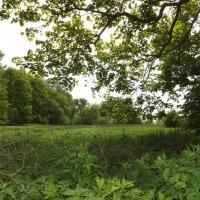 Lulemino, okolice Słupska, działa rolna, sprzedaż, 7792 m2, 35 000 zł - zdjęcie 1