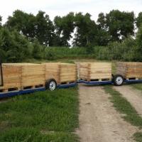 Wózek sadowniczy - zdjęcie 1