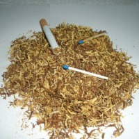pewny tytoń gotowy do palenia 65 zł - zdjęcie 1