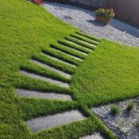 Zakładanie ogrodów - zdjęcie 1