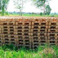 Ukraina.Wspolpraca.Drewno 15 zl/m3.Produkcja europalet,desek,biomasy,pelletu,brykietu,drewnianej galanterii,mebli,domow z bali,sklejki,plyt meblowych itp.Tanio Zapraszamy serdecznie wszystkich zainteresowanych do zakladania produkcji europalet, desek,bio - zdjęcie 1