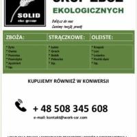 SKUP ZBÓŻ EKOLOGICZNYCH - zdjęcie 1