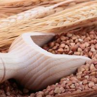 Ukraina. Len mielony, maka z nasion, ekstrahowany olej, siemie 1 zl/kg. Len oleisty, surowiec z wlasnych upraw. Oczyszczony 97%, olej 43%, workowany. Zloty, brazowy na pasze. Odmiany zoltonasienne: wloknista i oleista, do celow spozywczych posypka na chl - zdjęcie 1