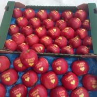 Sprzedam jabłko z napisem I LOVE YOU i KOCHAM CIĘ + serduszko - zdjęcie 1