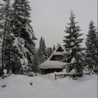 Domek góralski u podnóża Tatr (Małe Ciche) - zdjęcie 1